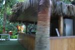 летен бар с покрив от тръстика