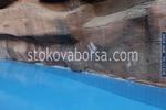 проектиране и изграждане на изкуствени скали за басейни